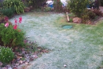 A_frosty_morning_winter_2006.jpg